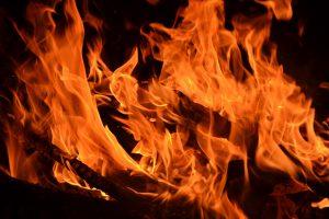 Kauno rajone per gaisrą sudegė šuo