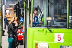 Kauno autobusus užplūdo zuikiai
