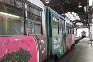 Kvietimas italams į Lietuvą – šaltibarščių lėkštėje ant Romos tramvajaus šono