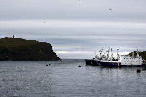 Japonija pripažins Rusijos teises į dvi Kurilų salas?