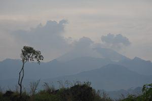 Indonezijoje ugnikalnio dujomis apsinuodijo 30 žmonių