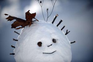 Vokietijoje ant bėgių pastatytas sniego senis privertė sustabdyti traukinį