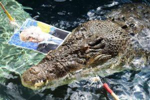 Krokodilas Australijos rinkimuose prognozuoja sėkmę premjerui