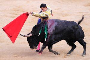 Ispanijoje bulius mirtinai subadė matadorą