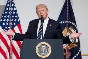 D. Trumpas per gegužės viršūnių susitikimą patvirtins įsipareigojimus NATO