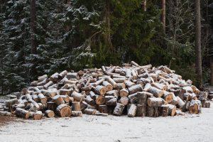 Medienos ir nenukirsto miško pardavimo mokestis – iki sausio 15-osios