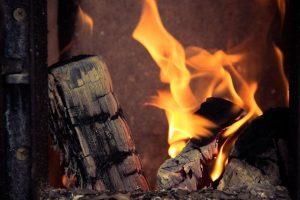 Panevėžio rajone apsinuodijusi smalkėmis mirė moteris