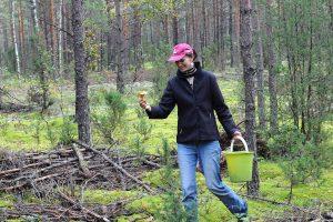 Miško gėrybių verslo sausra: kainos – dvigubai didesnės nei prieš penkerius metus