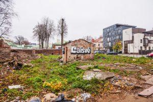 Kauno centre – šiukšlynas su žiurkėmis