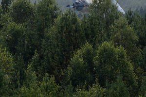 Pamaskvėje per aviacijos šventę sudužus biplanui žuvo du žmonės