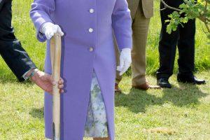 Britų karalienė puoselėja slaptą meilę medžiams