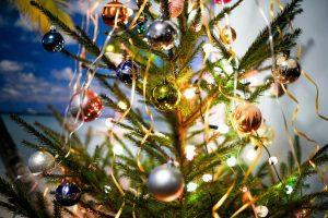 S. Paltanavičius: jei eglutę papuošime dabar, Kalėdos mums nebus šventė