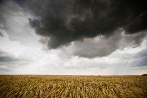 Perspėjama dėl smarkios audros ketvirtadienį