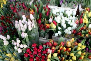 Pirkėjai piktinasi padidėjusiomis gėlių kainomis