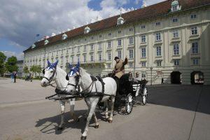 Vienoje karietas traukiantys arkliai galės ilsėtis per karščius