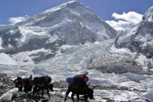 Ekspedicijos į Everestą: vakariečiams – įgeidis, šerpams – rizikingas darbas