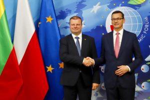 S. Skvernelis: Lenkija – artimiausia strateginė partnerė regione