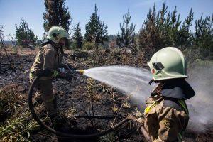 Dėl miško gaisrų Čilėje paskelbta nepaprastoji padėtis