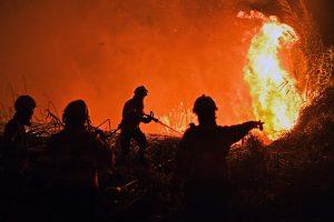Portugalija vėl kovoja su miškų gaisrais