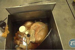 Nufilmuota didžiausia planetoje širdis