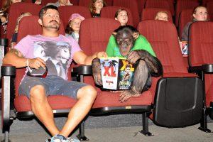 Kino teatre – neįprastas darbuotojas