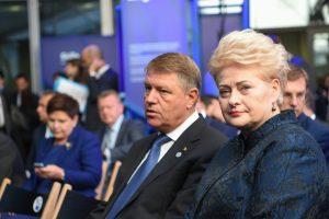 Lietuvos prezidentė ragina ES sukurti kibernetinio saugumo pajėgas