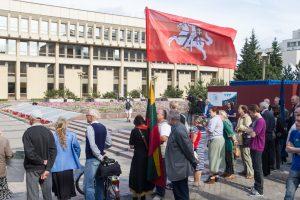 Mitinguotojai reikalauja Seimo narius mokyti kultūros ir istorijos