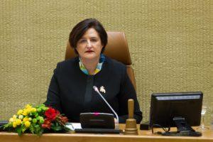 Išeidama L. Graužinienė gailėjosi, kad nepavyko sumažinti parlamentarų skaičiaus