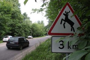 Atsargiai! Laukiniai žvėrys