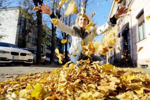 Orai palepins: pagaliau galėsime pasidžiaugti auksiniu rudeniu
