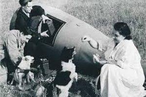 Šunys, pramynę žmonėms kelią į kosmosą