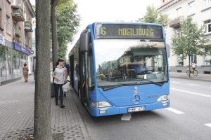 Uostamiesčio autobusams – vasaros ritmas