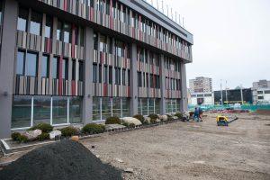 Savivaldybės pastato renovacija: iškirsti medžiai, pabrangę darbai?