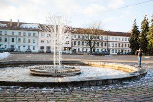 Steigiamojo Seimo aikštėje iškils namai?