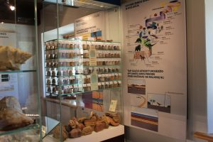 Akmenų muziejuje – nemokama audiogido paslauga