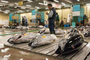 Lietuvius pribloškė didžiausias žuvų turgus Japonijoje