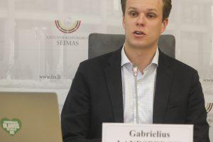 G. Landsbergis: Lietuvos demokratiją griauna valdančiųjų buldozeris