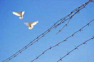 Mirties bausme nuteistas J. Buta į laisvę dar neišeis