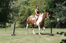 Priekulėje – žirgų sporto ir miesto šventė