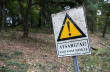 Baigėsi mėnuo, per kurį Labanoro girioje nebuvo galima vykdyti kirtimų