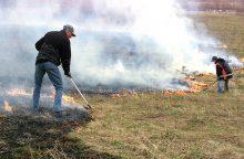 Žolės gaisrai – pavojus gamtai