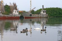 Lietuvos saugios laivybos administracijoje – landos korupcijai