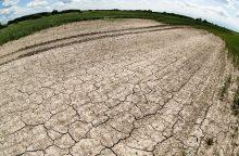 Skelbiama stichinė sausra: lietaus kol kas neužtenka
