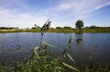 Masčio ežere rastas naujagimio lavonas