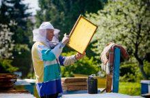 Sušvelninti reikalavimai Lietuvos bitininkams