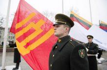 Lietuva pasitinka 100-metį su stipriausia kariuomene nuo jos atkūrimo