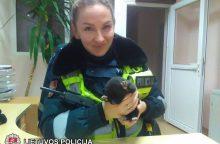 Gelbėjimo operacija: išmestą šunytį iš konteinerio ištraukė policininkai