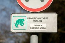 Sostinės parkuose – laikini eismo draudimai dėl varlių migracijos