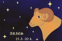 Draugystės horoskopas: kas artimiausias Avino sielai?