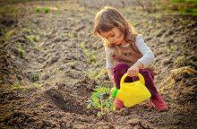 Vaikams – pažinimo pamokos lysvėje